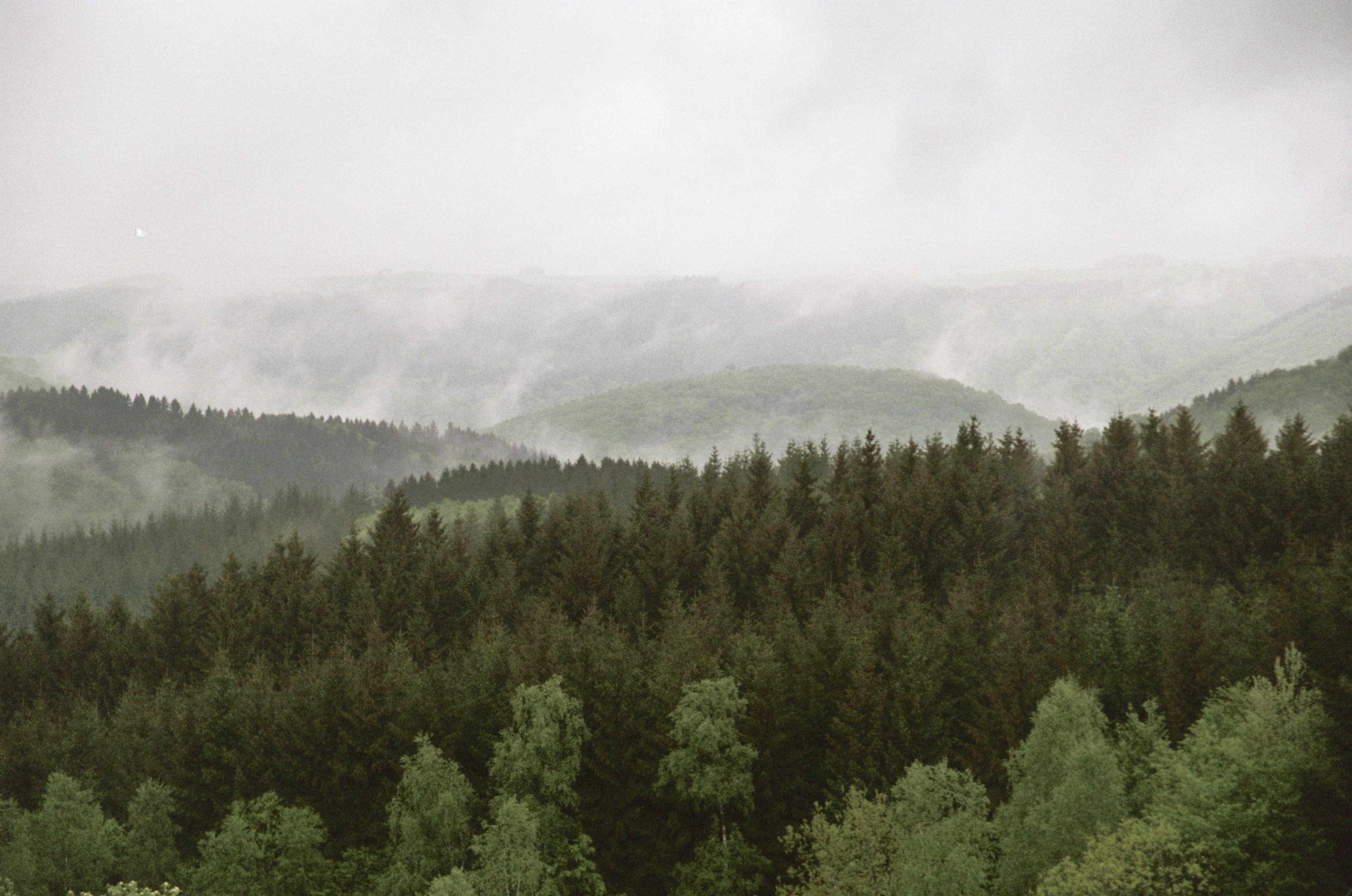 Ardennen vakantie met mist ook mooi!