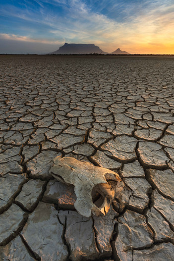 Dry Cape Town