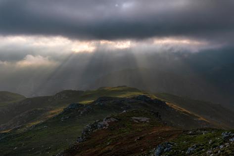 Morning Light Rays