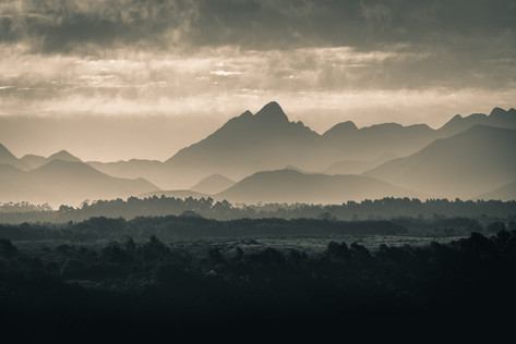 Tsitsikamma Mountains