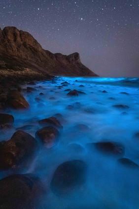 Kogelbay Bioluminescence