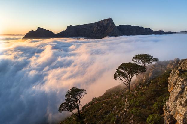 Table Mountain Fog Sunrise