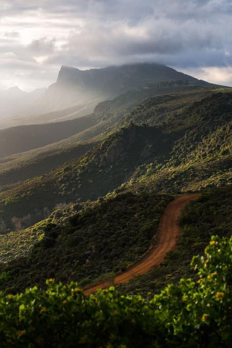 Piketberg Mountain Road