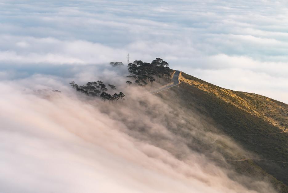 Signal Hill Sunrise Fog