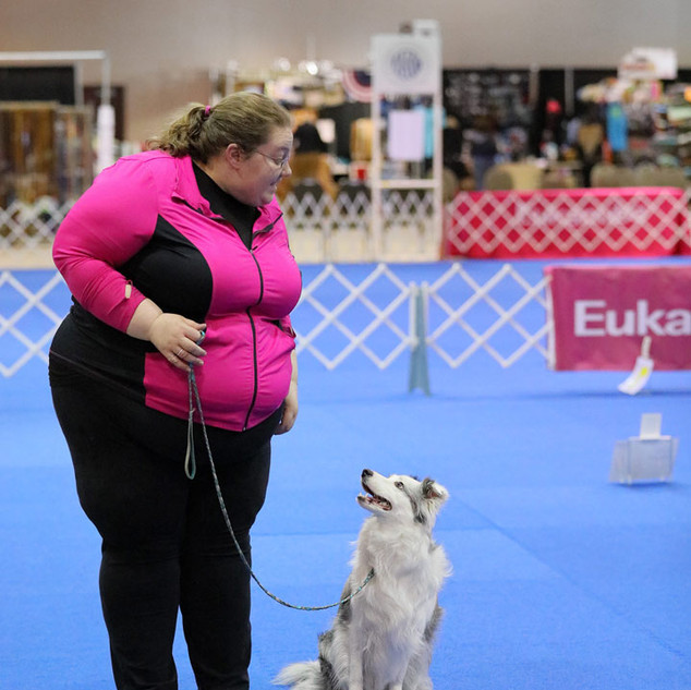 Valor AKC Rally Nationals 2018