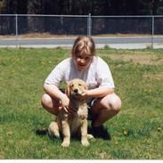My third Golden, Jenny 1993