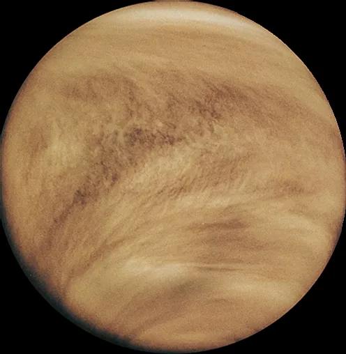 Venus 2.webp