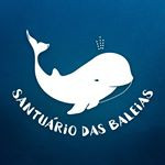 PETIÇÃO PARA A CRIAÇÃO DO SANTUÁRIO DE BALEIAS DO ATLÂNTICO SUL