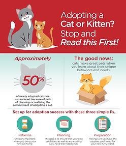 Adoption_Infographic.jpg