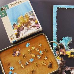 Ocean Coral puzzle