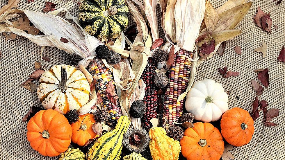 Fall Harvest Garden Cooking Class