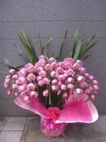 花鉢–11