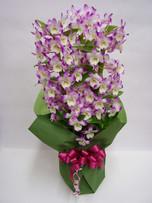 花鉢–21