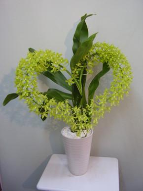 花鉢–22