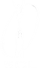 FinLOGO icon.png