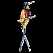 Акварели Bird 1