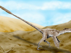Tell me about: Velociraptor - A Guide for Kids