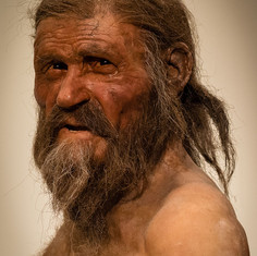 Top Stone Age Medicine Trivia to Teach Your Key Stage 2 Class
