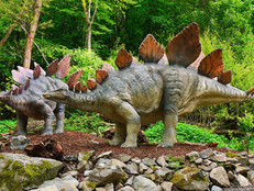 Tell me about: Stegosaurus - Facts for Kids