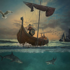 Viking Navigation - A Beginners Guide for Kids