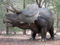 Tell me about: Triceratops - Fun Facts for Kids
