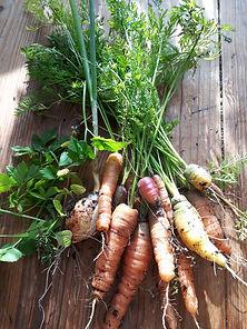 Innhøsting 4.jpg