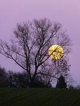 moon-229891_1920.jpg