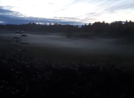 Samhain - dødens dans del 1