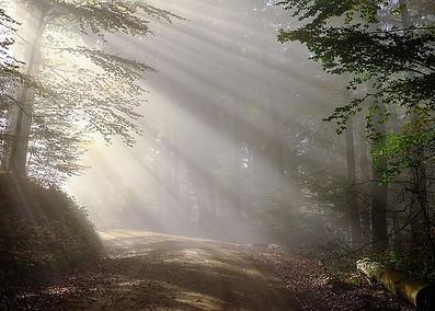 morning-1789903__480.jpg