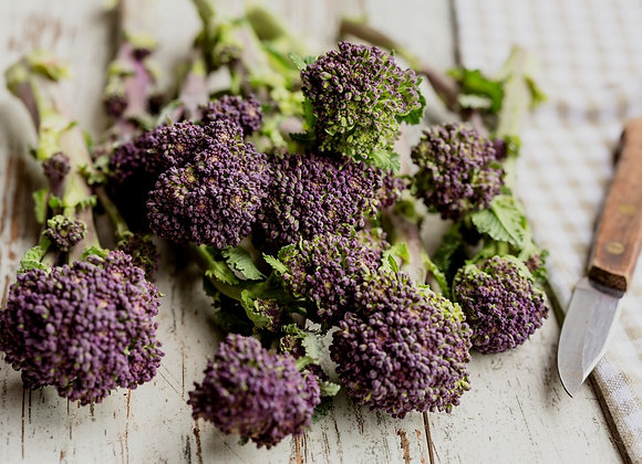 Organic Purple Sprouting Broccoli Seeds