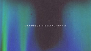 Visceral Snakes by Marigold is out now!