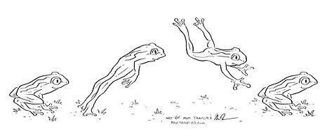 FrogJump.jpg