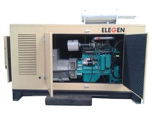 Diesel Generator Maintenance Elegen