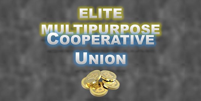 Elite MCU Logo_portrait.png
