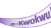 INTRODUCING E-KWOKWU!