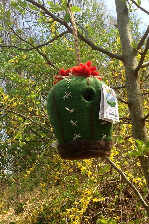 Barrel Cactus Bird House