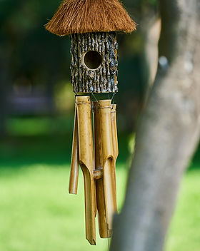beautiful%20wooden%20birdhouse%20in%20na