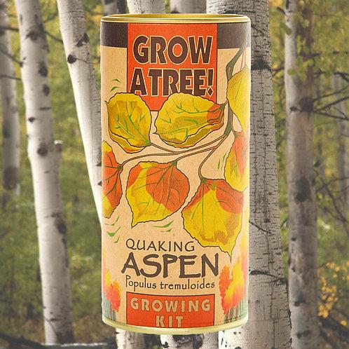 Quaking Aspen Growing Kit