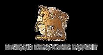 MDGE_Logo_RGB.png