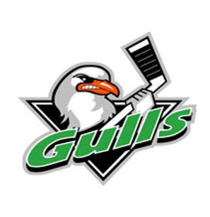 gulls_new_for_site3.jpg