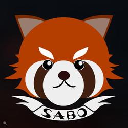 SABO小隊