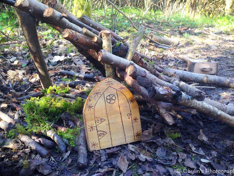 The Forest School Formula – exploring what 'long-term' really means...