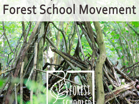 A History of the UK & US Forest School Movement
