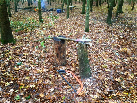 Why Forest School?