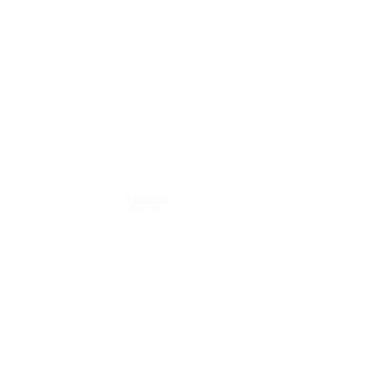 Owl (white).png