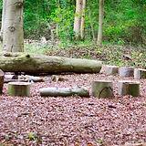 Log circle.JPG