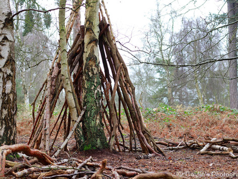 Is the impact of Forest School long-term?
