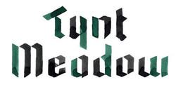 Tynt-Meadow-logo