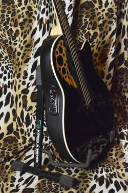 Instrument11