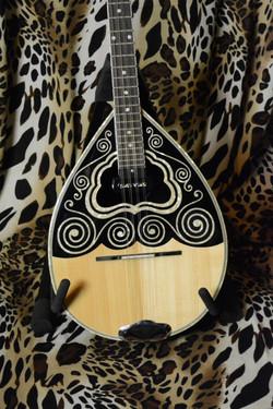 Instrument29